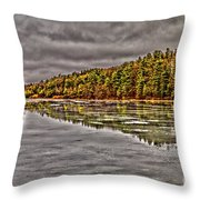 Winter At Pine Lake Throw Pillow