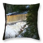Winter At Tahquamenon Throw Pillow