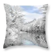 Winter At The Reservoir Throw Pillow by Lori Deiter