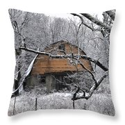 Winter Barn Iv Throw Pillow