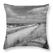 Winter Beach View - Black And White Throw Pillow