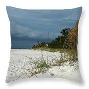 Winter Beauty At The Beachside Throw Pillow