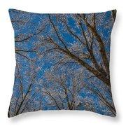 Winter Beauty Throw Pillow