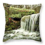 Winter Beauty Throw Pillow