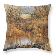 Winter Beaver Dam Charm Co     Throw Pillow