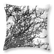 Winter Beckons Throw Pillow