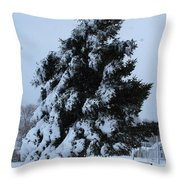 Winter Bench Throw Pillow