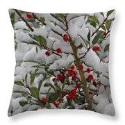 Winter Berries In Watercolor Throw Pillow