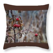 Winter Berries No.2 Throw Pillow
