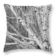 Icy Winter Birch Tree  Throw Pillow