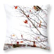Winter Birds 1 Throw Pillow