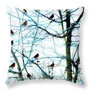 Winter Birds 2 Throw Pillow