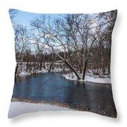 Winter Blue James River Throw Pillow