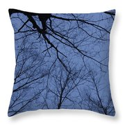 Winter Blue Sky Throw Pillow