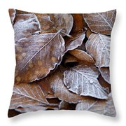 Winter Brown Leaves Powdered With Frost Throw Pillow