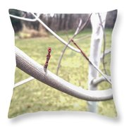 Winter Bud Throw Pillow