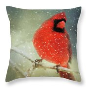 Winter Card Throw Pillow