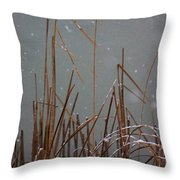 Winter Cat Tail Throw Pillow