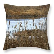 Winter Cattails  Throw Pillow