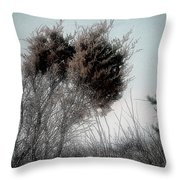 Winter Cedar Throw Pillow