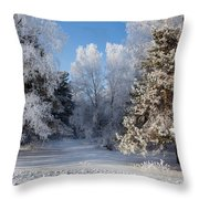 Winter Charm Throw Pillow