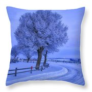Winter Chill Throw Pillow