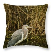 Winter Coat Throw Pillow