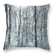 Winter Cold Throw Pillow