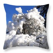 Winter Cotton Throw Pillow