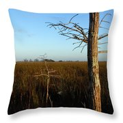Winter Cypress Throw Pillow