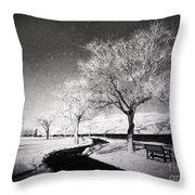 Winter Darkness Throw Pillow