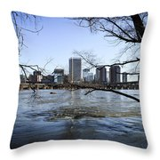 Winter Day At Belle Isle Throw Pillow