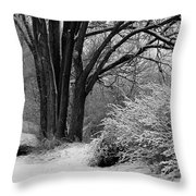 Winter Day - Black And White Throw Pillow