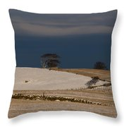 Winter Day Throw Pillow