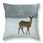 Winter Deer Walk Throw Pillow