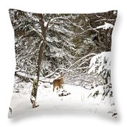 Winter Doe In The Upper Peninsula Throw Pillow