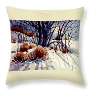 Winter Drifts Throw Pillow