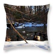 Winter Ducks Throw Pillow