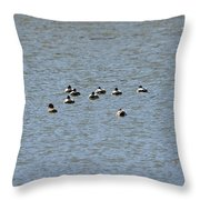 Winter Ducks Swimming Away  Throw Pillow