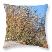 Winter Dunes Throw Pillow