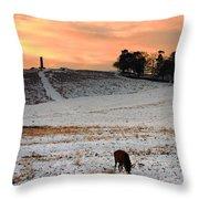 Winter Dusk At Bradgate Park Throw Pillow