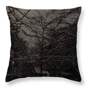 Winter Dusk Throw Pillow
