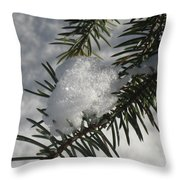 Winter Evergreen Throw Pillow