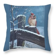 Winter Female Cardinal Throw Pillow