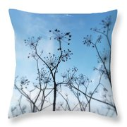 Winter Fennel Two Throw Pillow