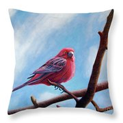 Winter Finch Throw Pillow
