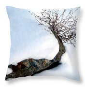 Winter Finery Throw Pillow