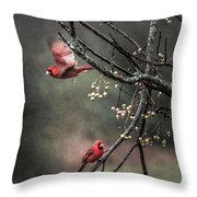Winter Flight  Throw Pillow by Kim Loftis