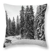 Winter Forest Journey Throw Pillow