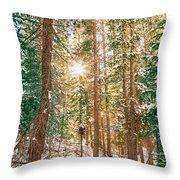 Winter Forest Sunshine Throw Pillow